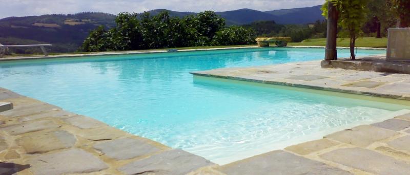 Costruzione piscine cemento armato pannelli for Bio piscina